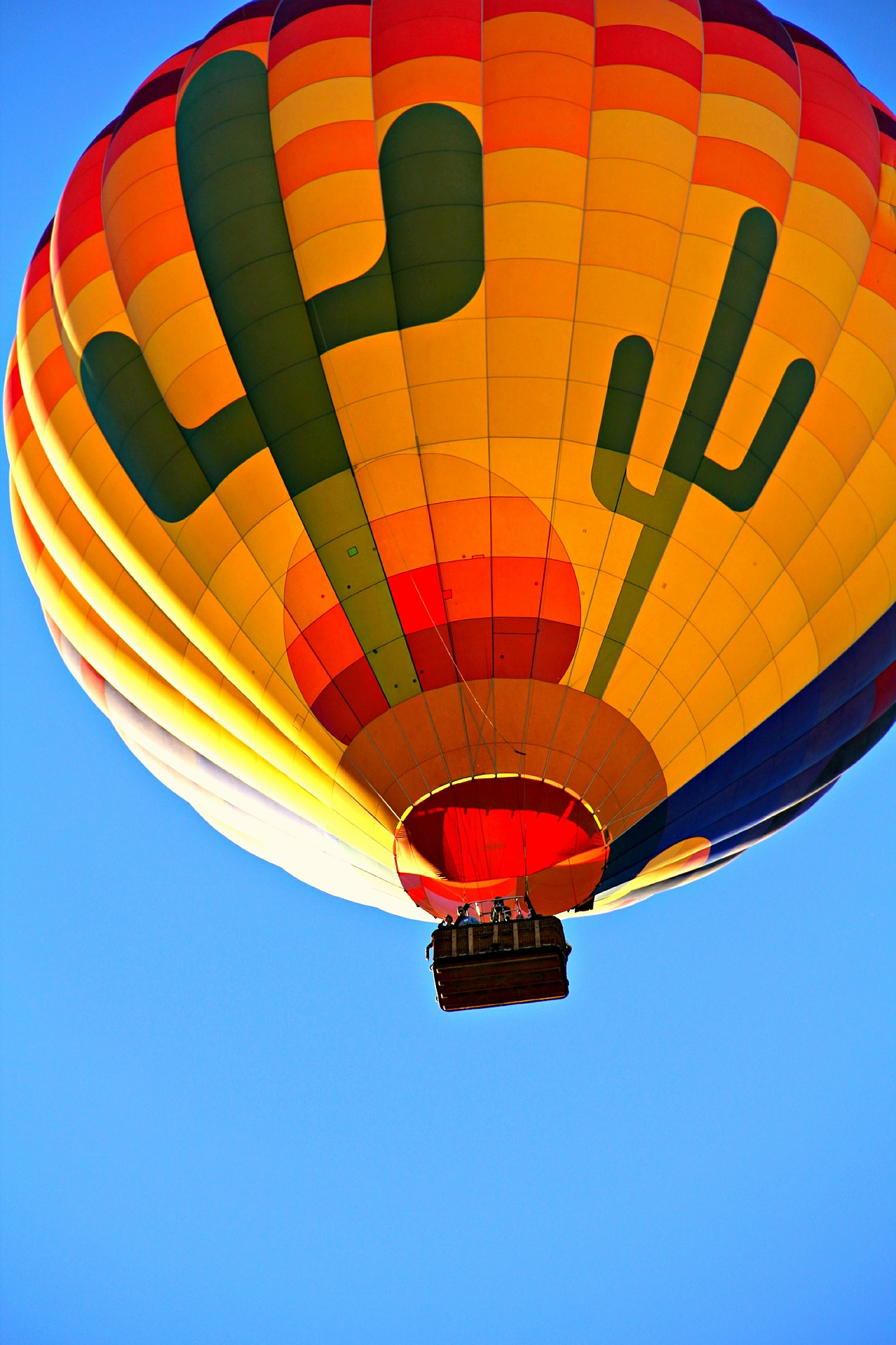 hot-air-balloon-521542_1920